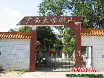 广西大学附属小学