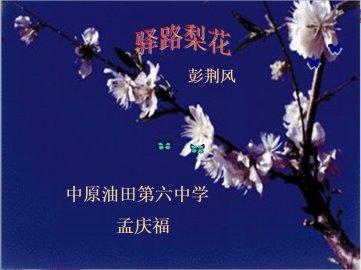 中学语文课件《驿路梨花》