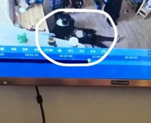 云南一幼儿园老师被指殴打幼儿已被捕