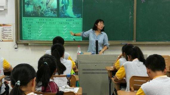 大学教师和小学教师,有什么区别呢?